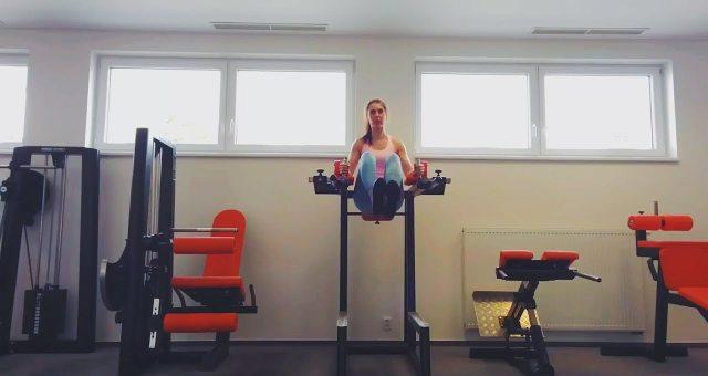 упражнение подъем ног в упоре на локтях